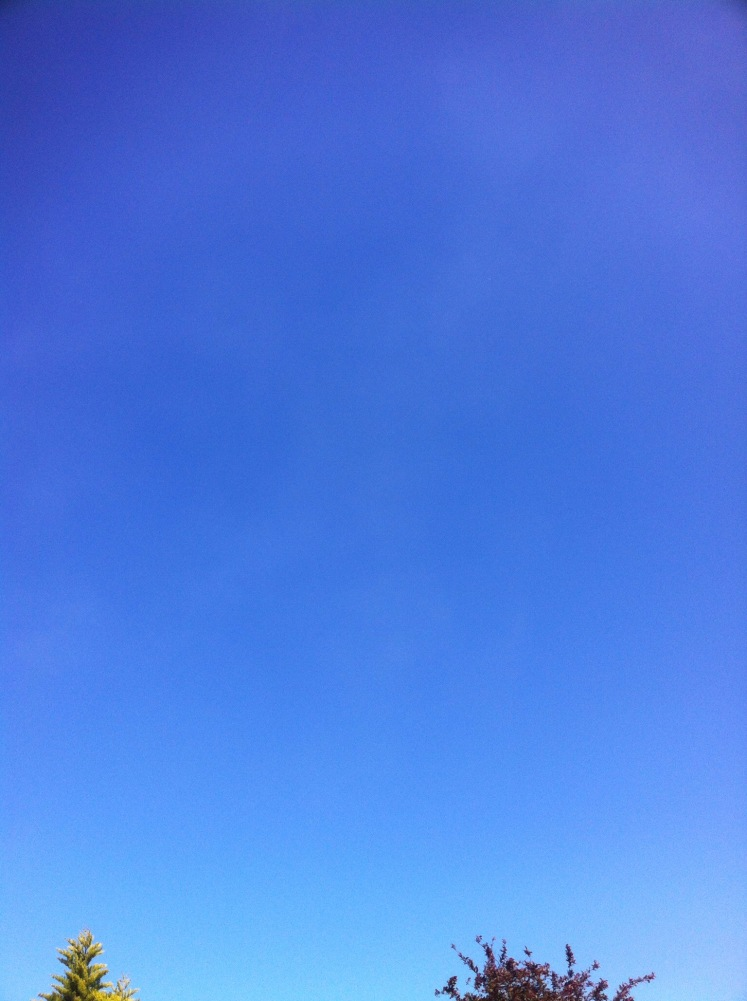 bib blue sky photo